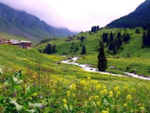 Turecki krajobraz